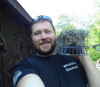 Maine Animal Control vs Animal Damage Control